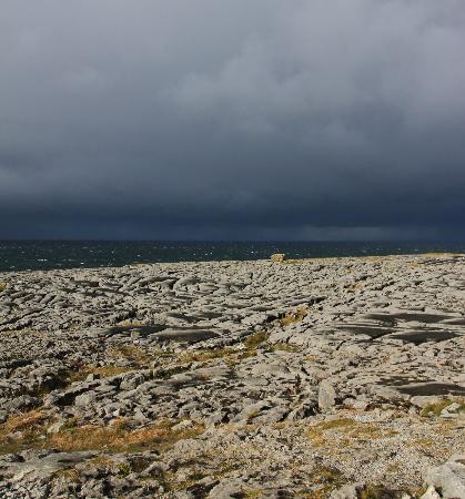 Burren Exposure: Paysage maritime de Burren