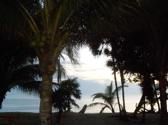 All Seasons Guest House : View from the beach