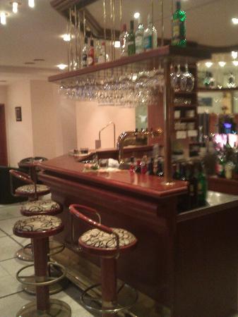 Hotel Elbschlösschen: Lobybar