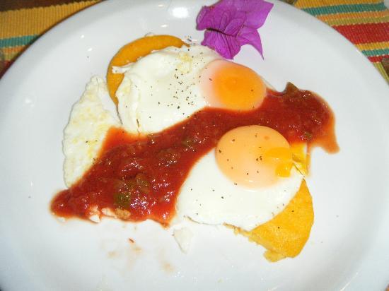 بوكويت جاردن إن هوتل: Huevos Rancheros 