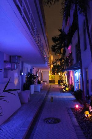 Congress Hotel South Beach: the congress by night