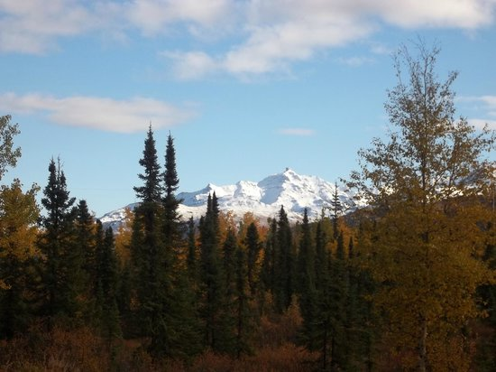 Denali Touch Of Wilderness Bed and Breakfast Inn: Just Beautiful