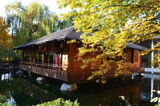 Japanese Garden Picture Of Hotel Marinela Sofia Sofia Tripadvisor