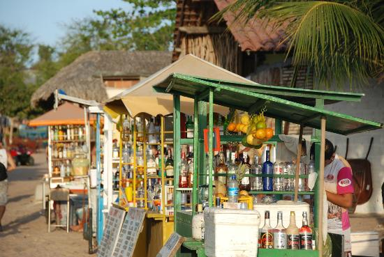 Jericoacoara Beach : Di sete non si muore