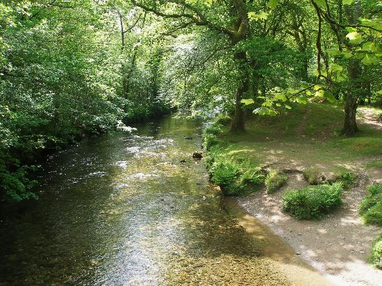 River Walkham Valley and Buckland Monachorum: river walkham