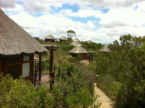 Garden Route Game Lodge: the chalets