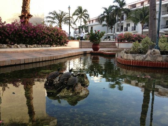 The Royal Cancun All Suites Resort: Turtle/goldfish pool by lobby