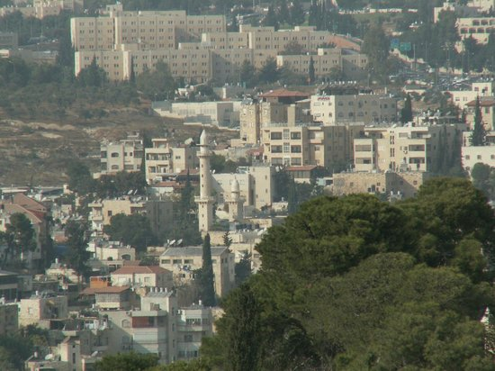 فندق الكزار: Вид с масличной горы на отель и минарет 