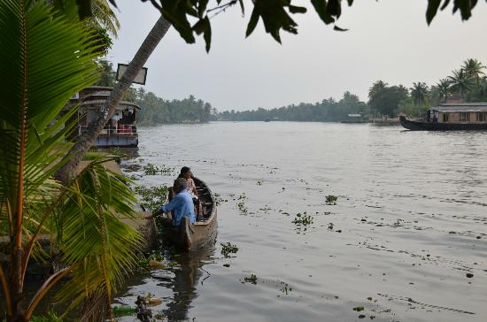 Thevercad Alleppey Homestay: View up the river