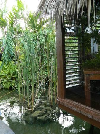 Paradisus Palma Real Golf & Spa Resort: Sap Cabins