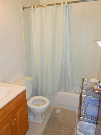 Mystery Mountain Resort: Bathroom
