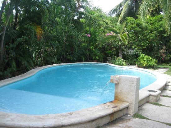 Siboney Beach Club: Swimming Pool