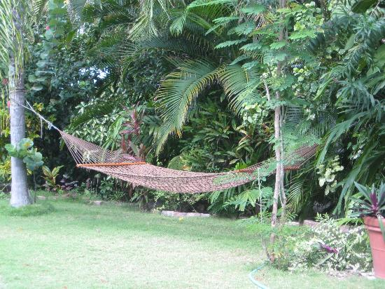 Siboney Beach Club: Hammock