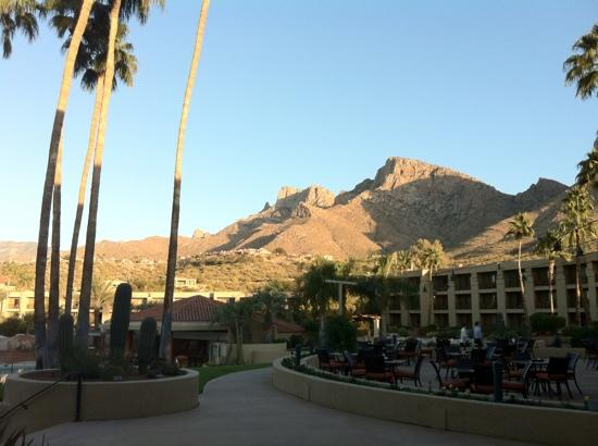 Hilton Tucson El Conquistador Golf & Tennis Resort: pool view