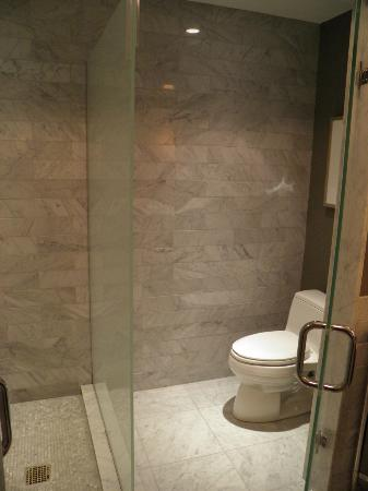 Waldorf Astoria Chicago: Toilet/Shower