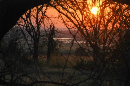 Olakira Camp, Asilia Africa: View of the river from our tent