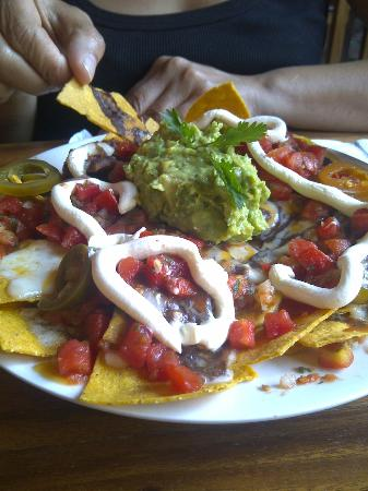 Rainbow Cafe: Nachos - enough for two.