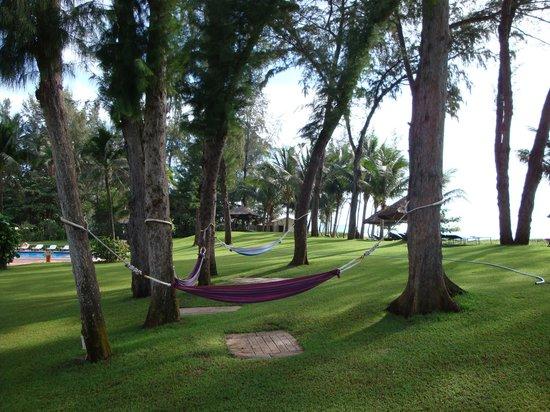Ocean Dunes Resort: территория отеля