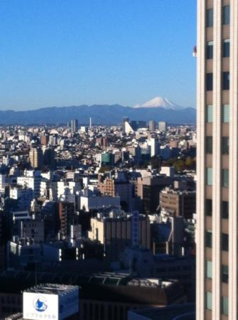 Sunshine City Prince Hotel: unblocked view of Mt Fuji on a clear day