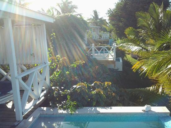 Cocobay Resort: View from plunge pool