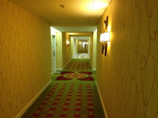 Renaissance Orlando Airport Hotel: hallway