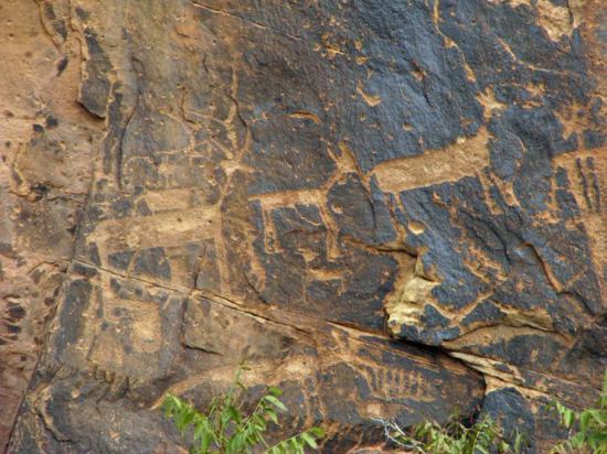Rock Art Canyon Ranch: Rock Art Ranch-petroglyphs found on the canyon walls