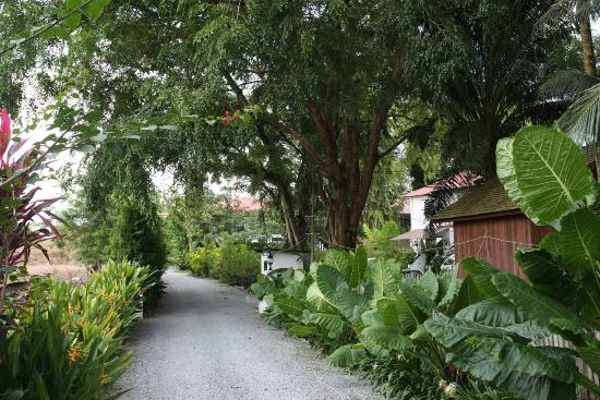 Basaga Holiday Residences: Entrance to basaga