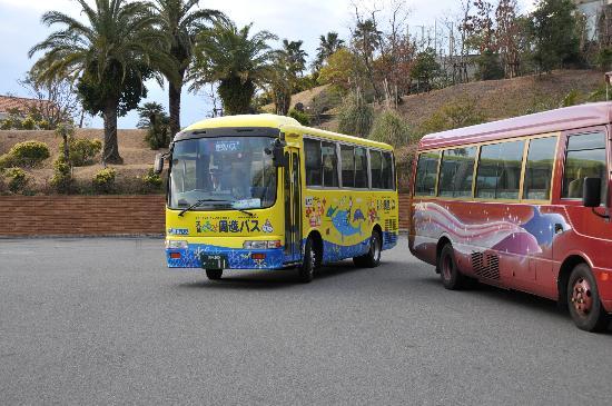 Shimoshima: バス