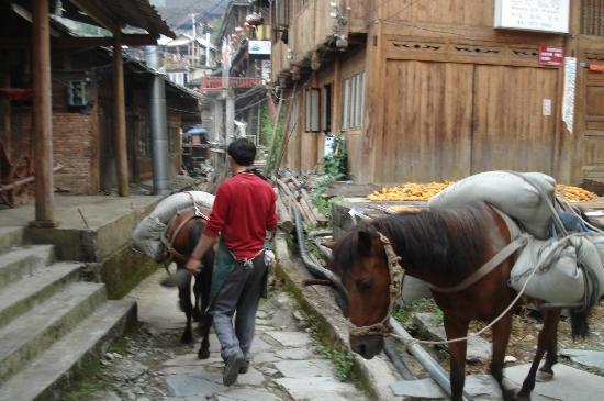 Ping'an County, จีน: Supply ponies - no cars in Ping An
