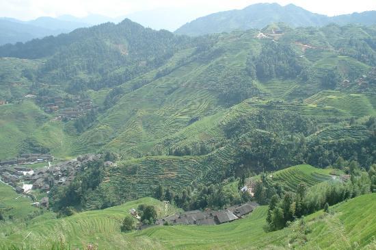 Xiyang County, China: Dazhai rice terraces