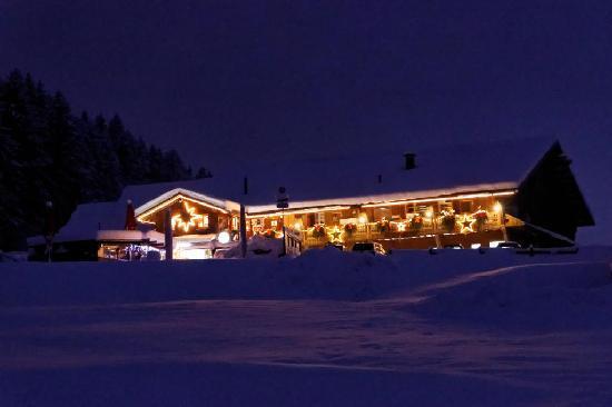 Haflingerstubli: Dezember 2012