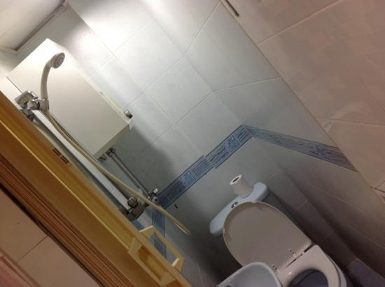 Nagaland Guest House: this is the bathroom, toilet and shower all in one, i had a job to fit in here and to sit on the