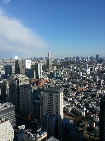 skyline from room in Park Hyatt Tokyo