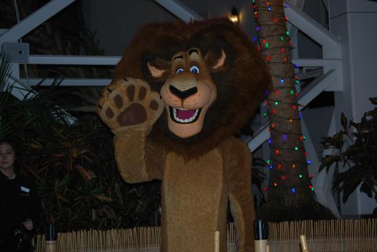 Gaylord Opryland Resort & Convention Center: Lion