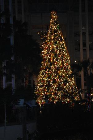 Gaylord Opryland Resort & Convention Center: Christmas Tree