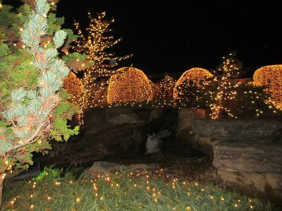 Gaylord Opryland Resort & Convention Center: Outdoor Lights