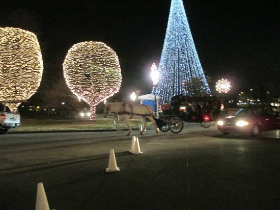 Gaylord Opryland Resort & Convention Center: Outdoor Lights