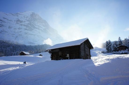 Aspen Alpin Lifestyle Hotel Grindelwald: Eiger 
