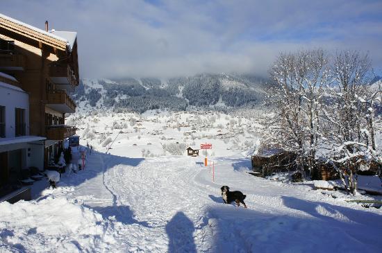 Aspen Alpin Lifestyle Hotel Grindelwald: Aussicht auf Grindelwald