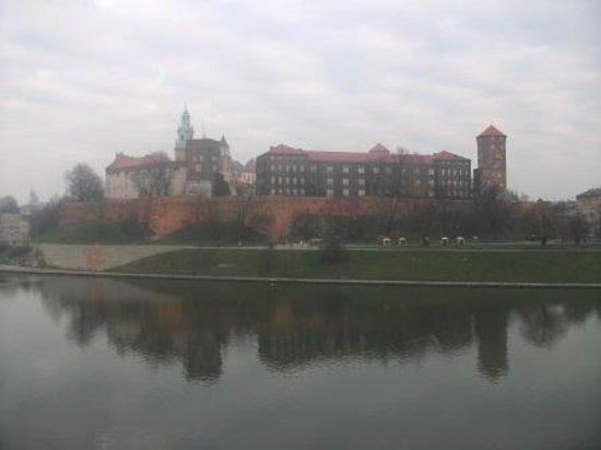 Hotel Poleski: Вид из окна