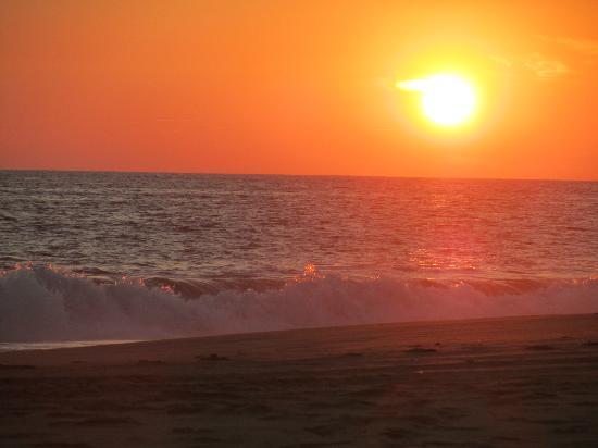 Quinta Erika: Pacific sunset