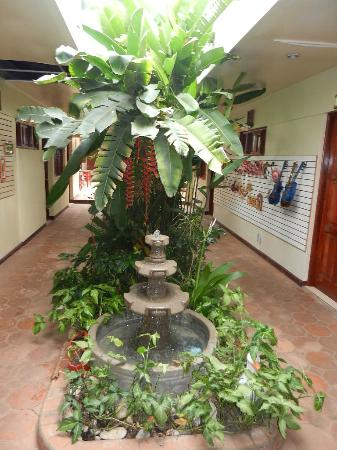 Art Hotel Managua: Fountain going back to rooms