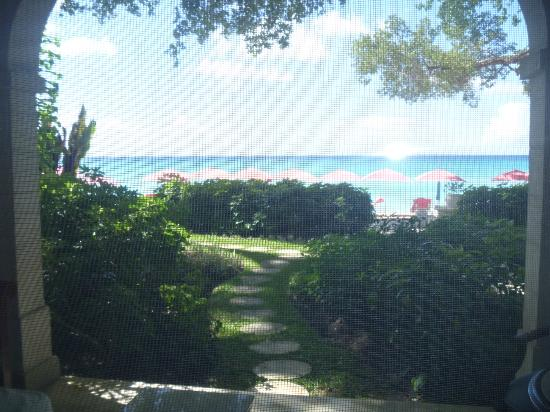 Sandy Lane Hotel : view from hotel room, dolphin wing rm 110 (screen door was closed that is the lines you see)