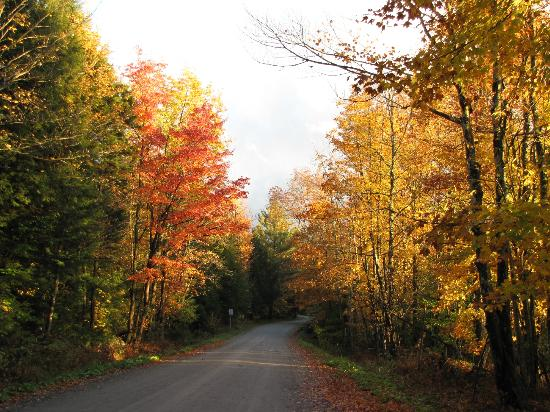 Sterling Ridge Resort: ....fall colors from down the road