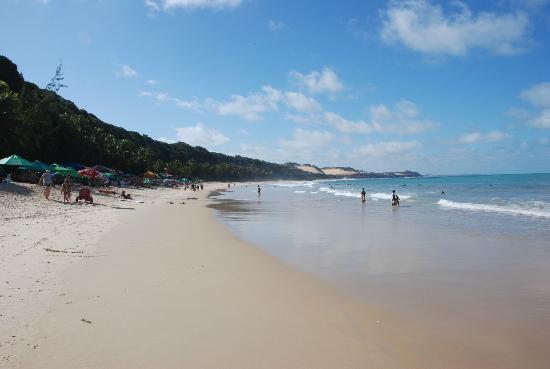 La bella spiaggia oltre Dolphins Bay