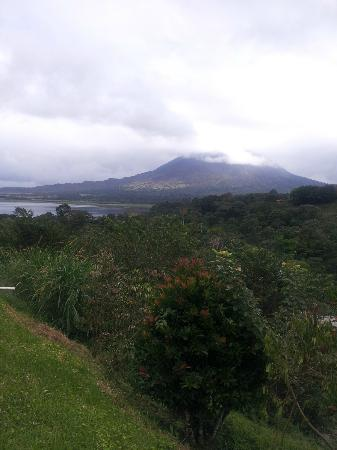 Hotel Castillo del Arenal: view from the restaurant