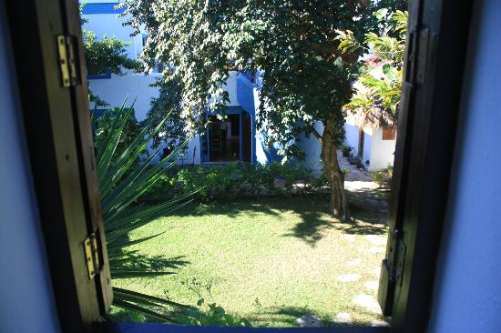 Tamarindo Bed and Breakfast: The garden