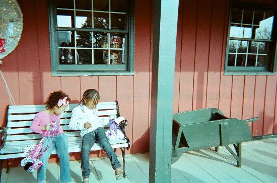 Polar Express at Blackberry Farm in Aurora IL