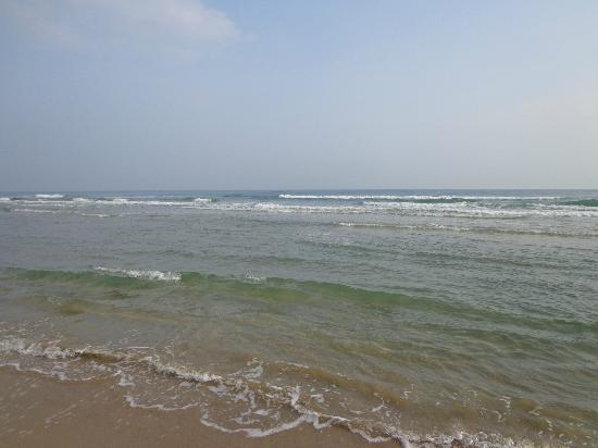 Arenas del Mar: Gulf of Mexico