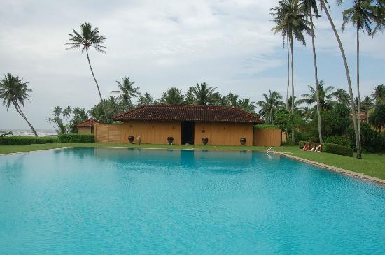 Jetwing Lighthouse : swimming pool